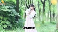 【新歌推荐】江南姑娘 - 索朗扎西  2017唯美动听网络情歌.KTV版