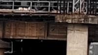 湖蟹0244-单机新余市百花湖公园停车与发车 湖蟹0217-货列通过新余市百花湖公园接近新余站交汇扫把0044-K8727次 萍乡-南昌通过新余市百花湖公园