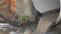 城市建设郊外地下排水管排放水流 ...