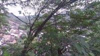【艾菲鱼 迷你Vlog】皖南最古老的神秘小山寨 017