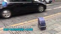 重庆一步行街现创意隔离墩 模样呆萌引围观