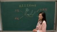 小学综合实践《蔬菜宝宝的秘密》(2017年郑州市中小学综合实践活动学科优质课评比观摩活动)