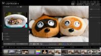 《秋凉lightroom视频教程》第01讲-0101-介绍视频教程