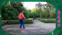 《鱼尾雁行》洛阳高原蓝单个套路集锦11