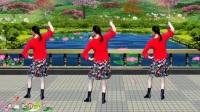 32步广场舞《云朵上的拉萨》正反面附口令分解教学