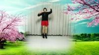 莲芳姐广场舞《感到幸福你就拍拍手》