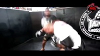 UFC 215- JUNIOR DOS SANTOS VS FRANCIS NGANNOU