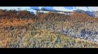 新疆-北国之春    少华演奏