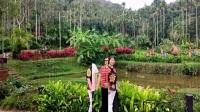 海南之旅(五)呀诺达雨林文化旅游区  2017.11.19
