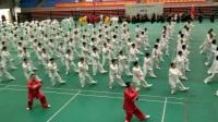 2017三亚国际武术节开幕式表演杨式24拳