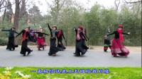 紫竹院广场舞——梦见你的那一夜(带歌词字幕), 没见过这么美的广场舞!