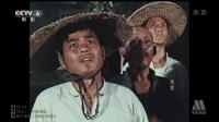 海鹰【王心刚】【CCTV修复版1080i】【国语无字】