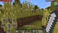 Minecraft MC 我的世界 傻逼生存2
