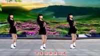 32步广场舞《花落花有情》正反面附口令分解教学