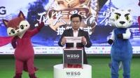 WESG2017亚太总决赛分组抽签/APAC Final Draw