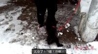 """小主人与泰迪狗打雪仗,泰迪狗:""""冻死了,饶了我吧!"""""""