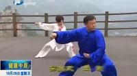 张东武老师陈式太极拳老架一路74式全套演练