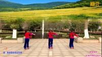 刘春英广场舞 把咱的秧歌扭起来 秧歌舞 背面
