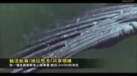 大雁团队视频