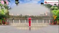 好心情蓝蓝广场舞合屏【一起走天涯原正背面】编舞分解 青儿.mp4_标清