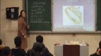 人教版化学九下《金属的化学性质》课堂教学实录-刘宏丽