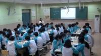 人教版化学九下8.2《金属的化学性质》课堂教学实录-沙娟