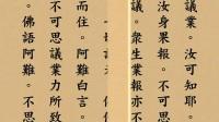 【無量壽經】讀誦(木魚)悟行法師領眾讀誦 _标清