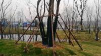 南京G捷号6位骑友骑游江宁汤山金乌温泉公园和七坊