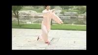 太极拳24式视频 24式简化太极拳-0005(4)