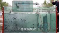 上海大福泵业切割电泵实验