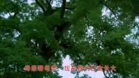 (儿行千里妈牵挂)湘西苗语改编