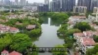深圳这五个地方, 真正的土豪聚居地, 想不想去捡垃圾?