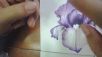 彩铅花鸟第一节07