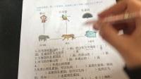 青岛版二年级上数学认识方向