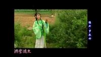 豫剧电视剧——《罗敷女》侯英 苗文华 赵岩主演 豫剧 第1张