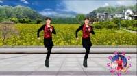 2018最新 蓝天云广场舞 时尚健身舞 《远走高飞》附口令教学.