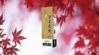 贵州酱香企业品牌推广平台 (4)