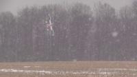 杰西2018年1月26日发布视频 密歇根州自己安装雪橇起落架 EF-91 YAK-54