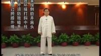 赵幼斌传统杨式太极拳讲座 1—20
