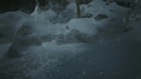 乌拉尔山:恐怖游戏:实况流程:第二幕:第八期:【被烧毁的树林】