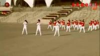 第九套齐之韵快乐舞步健身操