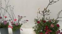 2018鄢陵腊梅梅花展暨全国获奖梅花盆景展万棵插花艺术获奖作品
