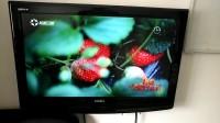 赤城宁馨儿草莓园上了旅游卫视