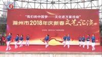 滁州市柔力球双拍队庆新春双拍双球展示(小苹果)