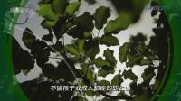 【經典音樂河】野地的花