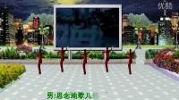 2018年最新广场舞茶姐广场舞简单好学.mp4