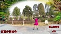 翠屏快乐广场舞《欢喜中国年》原创花球舞新年舞蹈 附背面教学