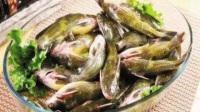 带你领略宜宾黄辣丁鱼火锅,坐在江边体会川菜的鲜香麻辣