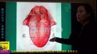 10望诊舌诊第十课舌质老嫩-《易演伤寒论》系列基础