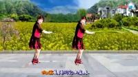 2018最新广场舞 广场舞 《爱你每一天》正背面及分解动作_超清